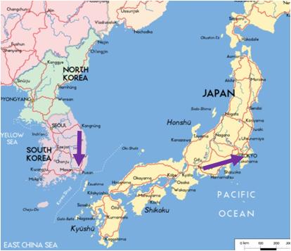 一部参加者を含め約40人が、韓国のトンヘから釜山まで、日本の名古屋から東京まで歩きます